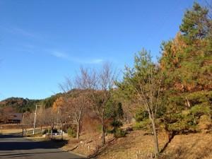 ファミリーランド 秋景色